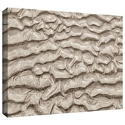 "ArtWall ""Sand Patterns"" Gallery Wrapped Canvas Arts By Cora Niele"