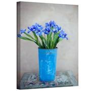"ArtWall ""Iris Flowers"" Gallery Wrapped Canvas Art By Elena Ray, 24"" x 16"""