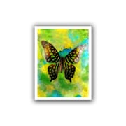 "ArtWall ""Butterfly on Yellow"" Unwrapped Canvas Art By Elena Ray, 18"" x 24"""