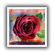 """ArtWall """"Rose"""" Unwrapped Canvas Art By Elena Ray, 14"""" x 14"""""""