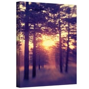 """ArtWall """"Woodland Sunset"""" Gallery Wrapped Canvas Art By Elena Ray, 16"""" x 24"""""""