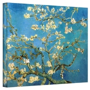 "ArtWall ""Almond Branches in Bloom"" Flat/Rolled Canvas Art By Vincent Van Gogh, 12"" x 16"""
