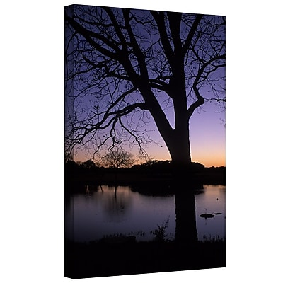 "ArtWall ""Texas Sunset on The Lake"" Gallery Wrapped Canvas Art By Kathy Yates, 32"" x 48"""