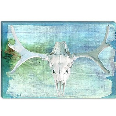iCanvas Canada Moose Skull 5 Graphic Art on Canvas; 8'' H x 12'' W x 0.75'' D