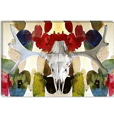 iCanvas Canada Moose Skull 2 Graphic Art on Canvas; 12'' H x 18'' W x 0.75'' D