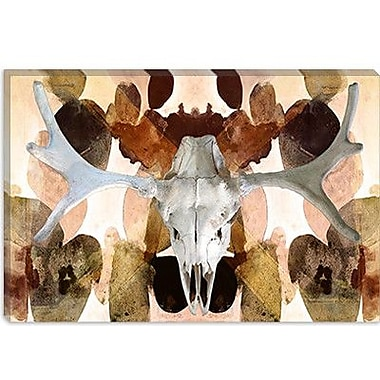 iCanvas Canada Moose Skull 4 Graphic Art on Canvas; 26'' H x 40'' W x 0.75'' D