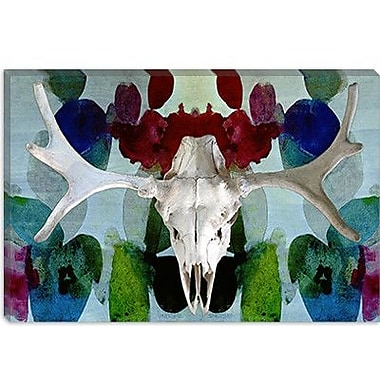 iCanvas Canada Moose Skull 3 Graphic Art on Canvas; 26'' H x 40'' W x 1.5'' D