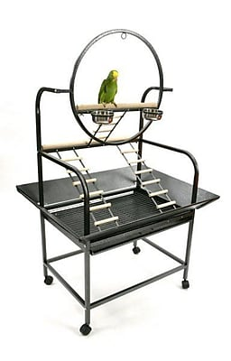 A&E Cage Co. The O'' Parrot Play Stand; Platinum