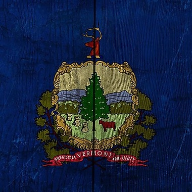 iCanvas Flags Vermont Graphic Art on Wrapped Canvas; 18'' H x 18'' W x 0.75'' D