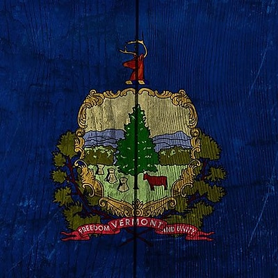 iCanvas Flags Vermont Graphic Art on Wrapped Canvas; 37'' H x 37'' W x 1.5'' D