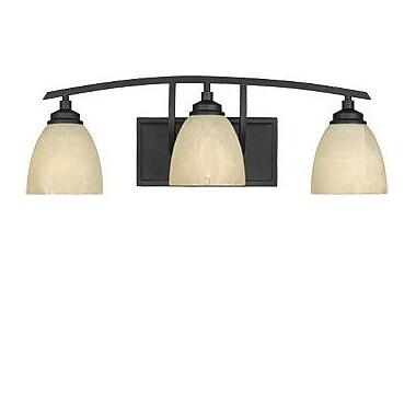 Designers Fountain Tackwood 3-Light Vanity Light; Burnished Bronze