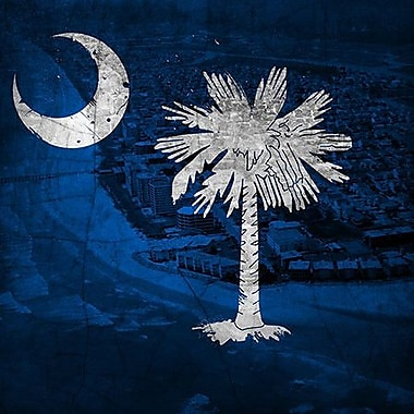 iCanvas Flags South Carolina Myrtle Beach Graphic Art on Wrapped Canvas; 37'' H x 37'' W x 1.5'' D