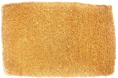 Imports Decor Plain Doormat; 1'4'' x 2'3'' WYF078275710094