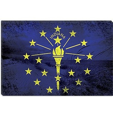 iCanvas Indiana Flag, Indiana Dunes State Park Graphic Art on Canvas; 8'' H x 12'' W x 0.75'' D