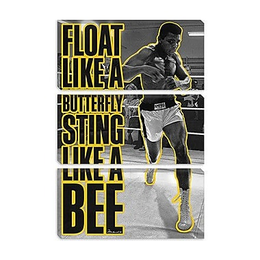 iCanvas 'Float like a Butterfly Sting Like a Bee' by Muhammad Ali Graphic Art on Canvas