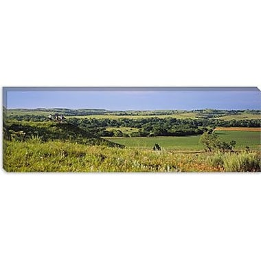 iCanvas Panoramic Three Mountain Bikers on a Hill, Kansas Photographic Print on Canvas