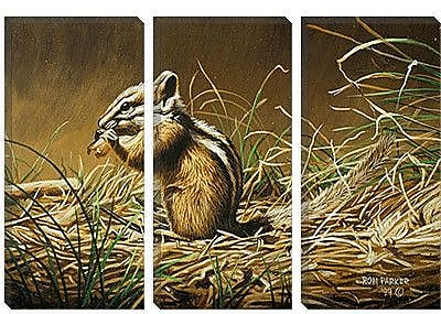 iCanvas 'Chipmunk' by Ron Parker Graphic Art on Canvas; 12'' H x 18'' W x 1.5'' D