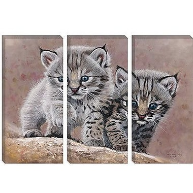 iCanvas 'Bobcat Babies' by Pip McFarry Painting Print on Canvas; 26'' H x 40'' W x 0.75'' D