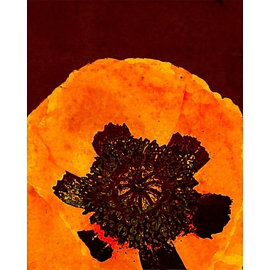Evive Designs Autumn Bohemian Poppy by Evie Alessandria Graphic Art