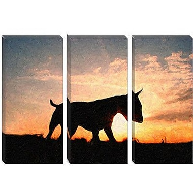 iCanvas 'English Bull Terrier' by Michael Tompsett Photographic Print on Canvas