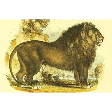 Belle Banquet Lion Placemat (Set of 6)