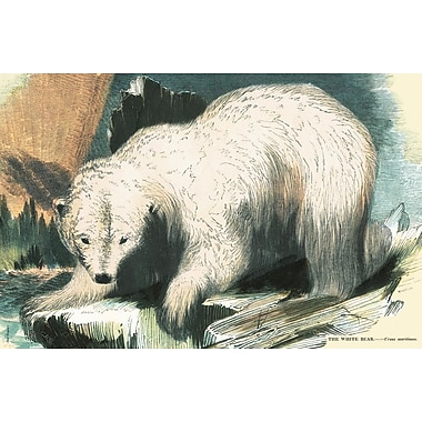 Belle Banquet Polar Bear Placemat (Set of 6)