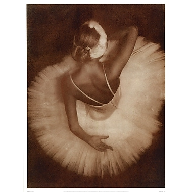 Evive Designs Pirouette by Joy Goldkind Photographic Print
