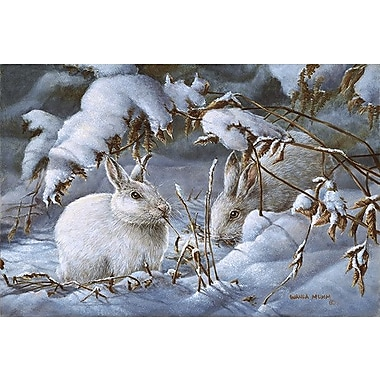 iCanvas 'Winter Hares' by Wanda Mumm Painting Print on Canvas; 26'' H x 40'' W x 0.75'' D