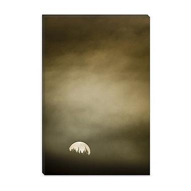 iCanvas 'Wild Moon l' by Dan Ballard Photographic Print on Canvas; 26'' H x 18'' W x 0.75'' D