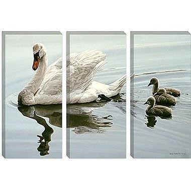 iCanvas 'Mute Swan and Three Cygnets' by Ron Parker Photographic Print on Canvas
