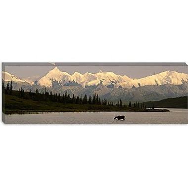 iCanvas Panoramic Wonder Lake, Denali National Park, Alaska Photographic Print on Canvas