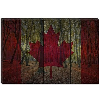 iCanvas Canada Flag #3 Graphic Art on Canvas; 26'' H x 40'' W x 1.5'' D
