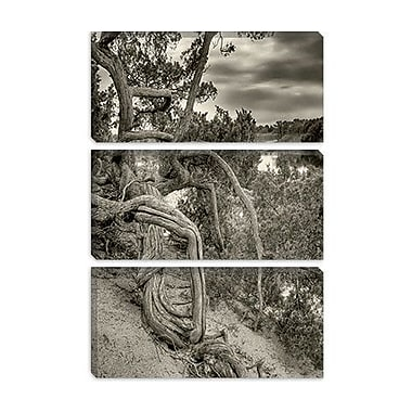 iCanvas 'Gorgon' by Geoffrey Ansel Agrons Photographic Print on Canvas; 40'' H x 26'' W x 1.5'' D