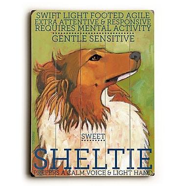 Artehouse LLC Sheltie by Ursula Dodge Graphic Art Plaque