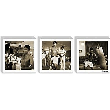 iCanvas Muhammad Ali Training in Action at the Gym Panoramic Memorabilia on Wrapped Canvas