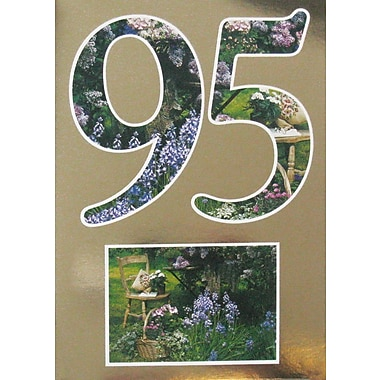 Greeting Cards, Birthday, Age 95, 18/Pack