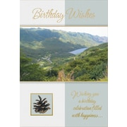 Greeting Cards, Birthday Wishes, Nature, 18/Pack