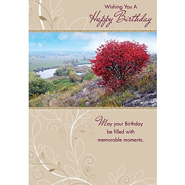 Cartes de souhaits, « Wishing you a Happy Birthday », nature, paquet de 18