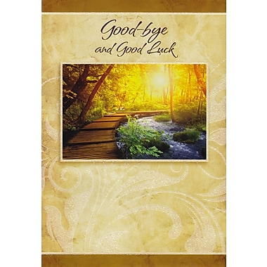 Greeting Cards, Good-bye and Good Luck, 18/Pack