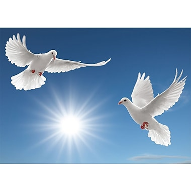 Greeting Cards, Blank Inside, Two Doves, 18/Pack