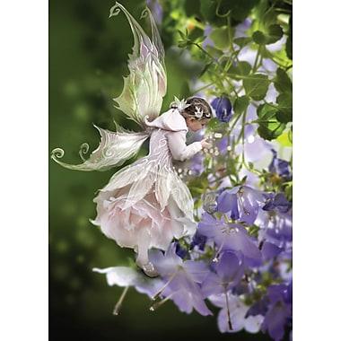 Cartes de souhaits, intérieur vierge, fées, paquet de 18