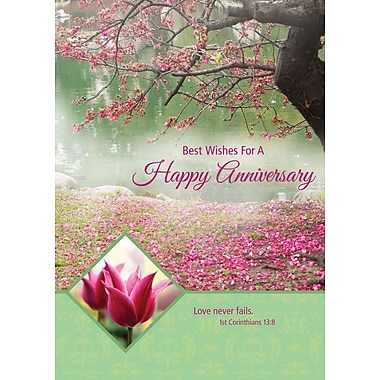 Greeting Cards, Best Wishes For A Happy Anniversary, 18/Pack