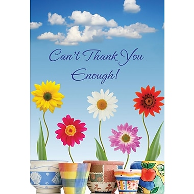 Thank You Cards, Can't Thank You Enough!,48 Notelet Cards