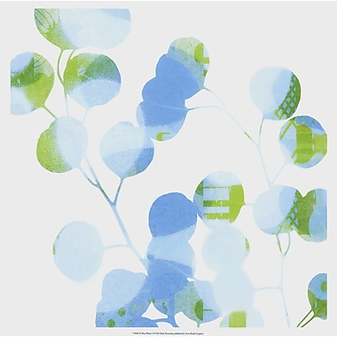 Evive Designs Blue Plums I by Ricki Mountain Graphic Art