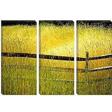 iCanvas 'Sea of Grass' by Bob Rouse Painting Print on Canvas; 12'' H x 18'' W x 0.75'' D