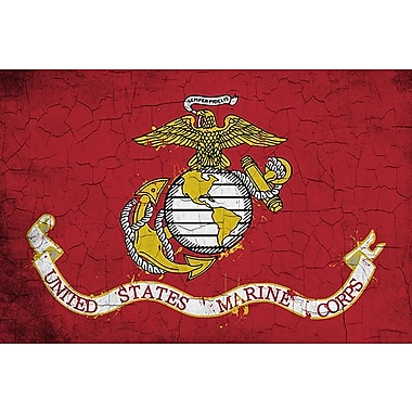 iCanvas Flags U.S. Marine Grunge Painted Graphic Art on Wrapped Canvas; 26'' H x 40'' W x 0.75'' D