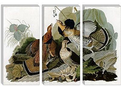 iCanvas 'Ruffed Grouse' by John James Audubon Graphic Art on Canvas; 40'' H x 60'' W x 1.5'' D
