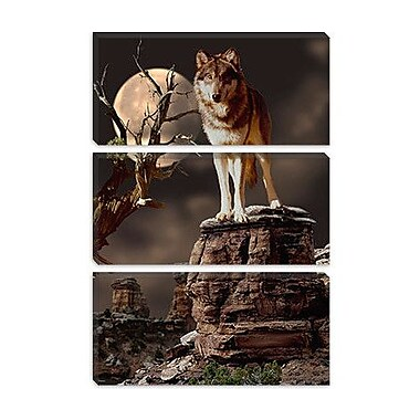 iCanvas 'Moonlighter' by Gordon Semmens Photographic Print on Canvas; 40'' H x 26'' W x 1.5'' D