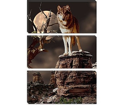 iCanvas 'Moonlighter' by Gordon Semmens Photographic Print on Canvas; 26'' H x 18'' W x 1.5'' D