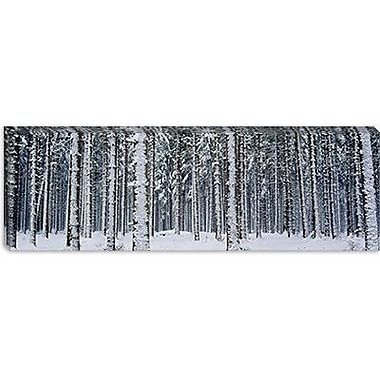 iCanvas Panoramic Snow Covered Trees in a Forest, Austria Photographic Print on Wrapped Canvas